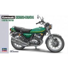 Kawasaki KH250-B3/B4 (1978/1979) 1/12