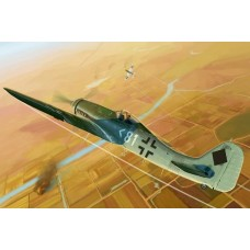 Focke-Wulf FW 190D-11 1/48