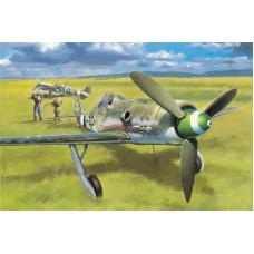 Focke-Wulf FW 190D-13 1/48