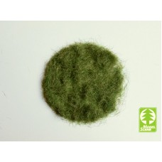 Grass-Flock 4.5 mm - Early Summer 50g
