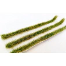 Long grass strips - Late Summer