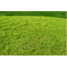 Grass Mat - Cut Meadow (spring) 29x19cm
