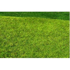 Grass Mat - Meadow - High-grown (spring) 29x19cm