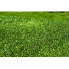 Grass Mat - Meadow - High-grown (early summer) 29x19cm