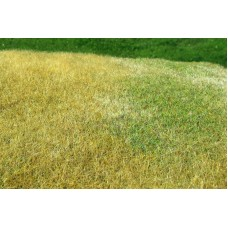 Grass Mat - Meadow - High-grown (late summer) 29x19cm
