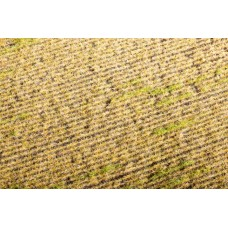 Grass Mat - Stubble field 29x19cm