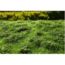 Grass Mat - Low Bushes (early summer) 29x19cm