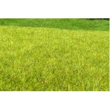 Grass Mat - Wetland light 29x19cm