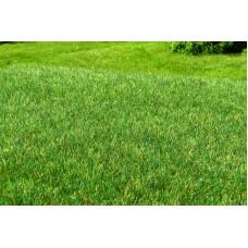 Grass Mat - Wetland dark green 29x19cm