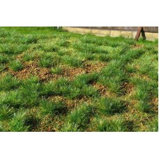 Grass Mat - Steppe Green (early summer) 29x19cm
