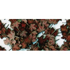 Maple Leaves - Extra Colors, 1/35